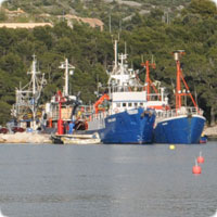 Maritime commercial